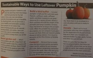 What do you do with your leftover pumpkin?